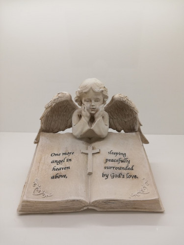 9555-Angel on Book
