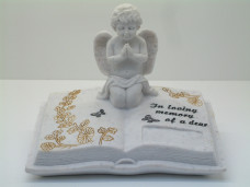 6106 - Angel Sitting on Book